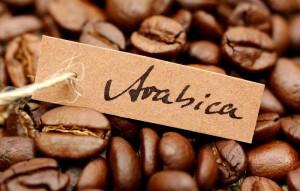арабика кофе e1447449904238 300x191 - Кофе в зернах. Выбираем на свой вкус
