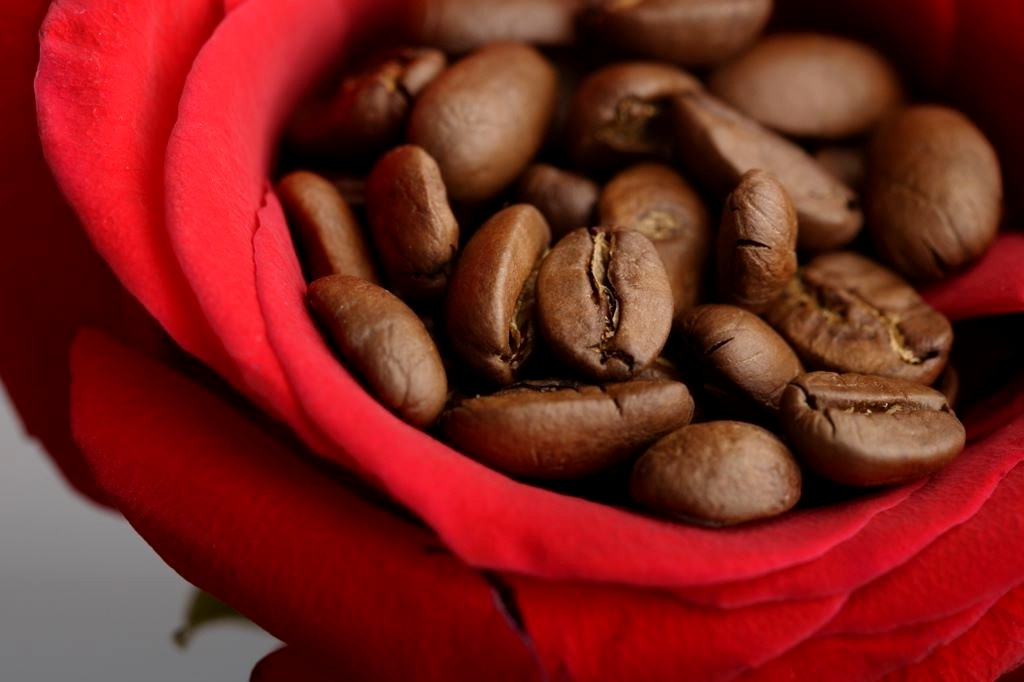 .jpg - Кофе Арабика