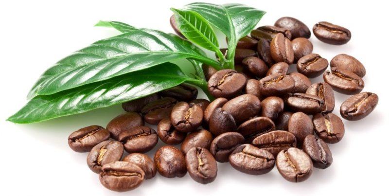 зерна кофе e1512319407537 - Кофе в зернах. Выбираем на свой вкус