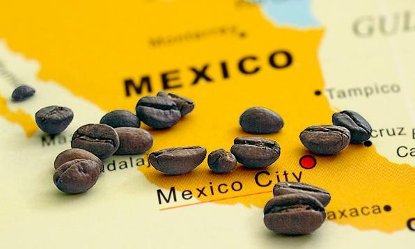 зерновой кофе мексики