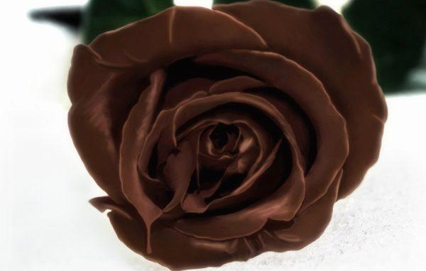 шоколад e1512327009196 - Черный шоколад - изысканный восторг!