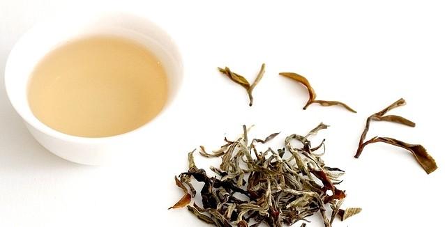 белого чая e1467139247791 - Белый чай-нежный вкус и аромат!