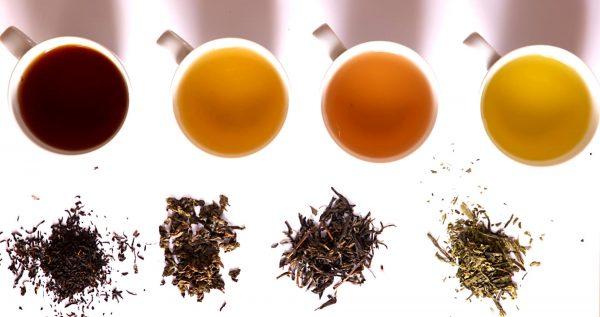 сорта чая e1512327996733 - Чай — напиток здоровья и долголетия!