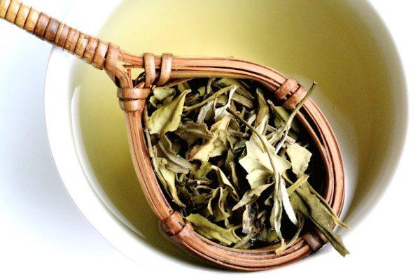 мей белый чай e1512393180809 - Белый чай-нежный вкус и аромат!