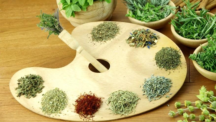виды чая e1467139072118 - Виды зеленого чая - палитра вкусов и ароматов!