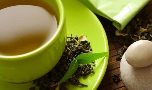 зеленый чай виды и сорта