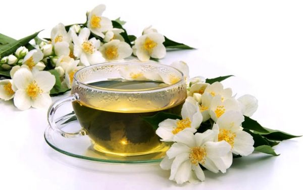 зеленый чай с жасмином полезные свойства