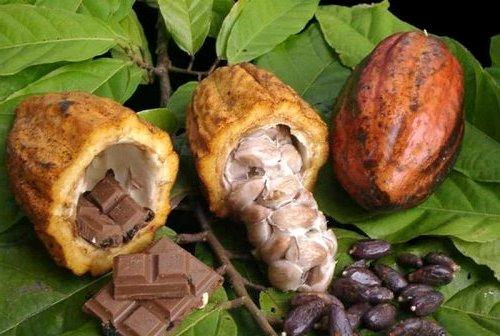 какао под глаза - Масло какао - применение для лица и тела!